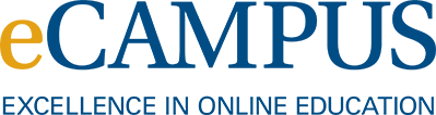 UNK ecampus excellence in online education
