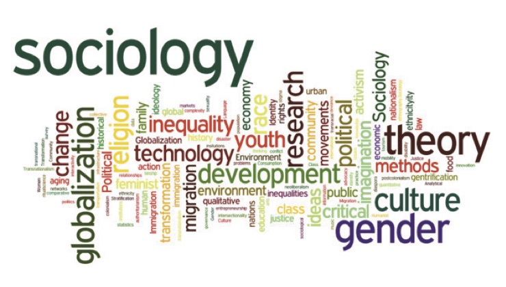 This image is a word jumble of what sociology entails, such as technology, culture, gender and environment.