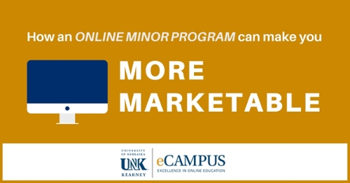 How an Online Minor Program Can Make You More Marketable Photo
